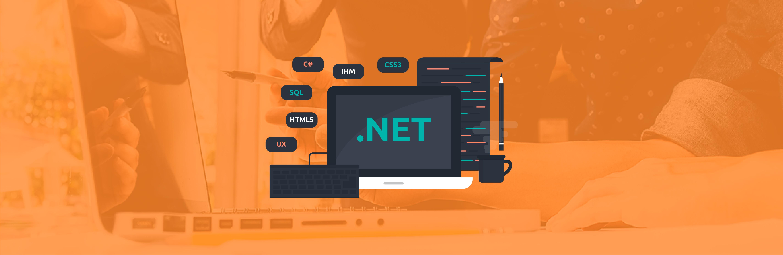 Aprender NET PRO